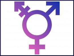 Symbol Transgender