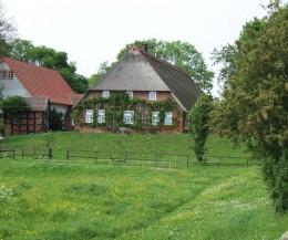 Reeddachhaus auf einer Warft