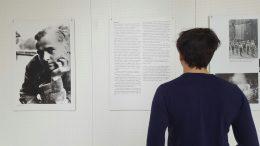 """Mann steht vor Tafeln zum Thema """"Weiße Rose"""""""