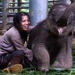 Lek Chailert lachend und sitzend neben Elefantenbaby