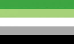 Flagge Aromantik