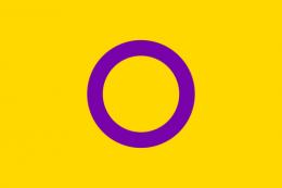 Flagge Intersexualität