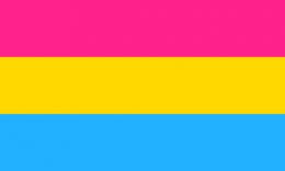 Flagge Pansexualität