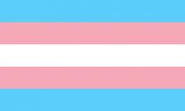 Flagge Trans*