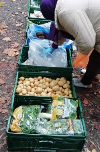 Eine Reihe an Kisten mit Lebensmitteln steht draußen auf dem Boden. Eine Frau mit einem lila Kopftuch nimmt sich davon
