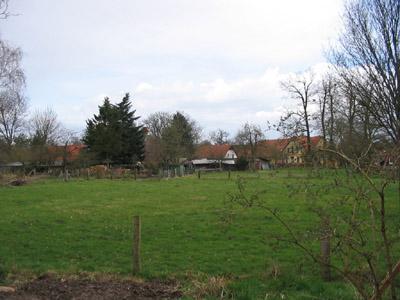 Wiese, im Hintergrund Häuser