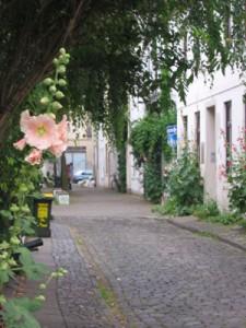Kleine Straße im Viertel mit Stockrose